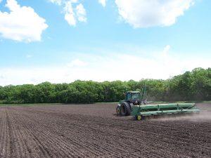 Seeding flax
