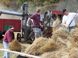 Three generations pitching bundles into threashing machine